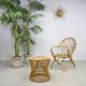 Vintage rotan lounge set fauteuil & kruk, vintage rattan chair & stool