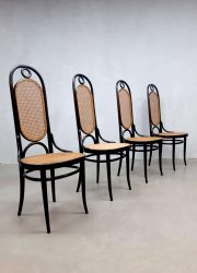 Dining chairs eetkamerstoelen Thonet model 207R set vintage
