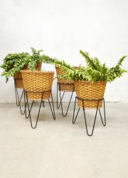 Dutch design midcentury rattan wicker plant stands planter plantenstandaard